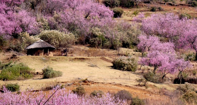 LHDA to protect Lesotho's cultural heritage
